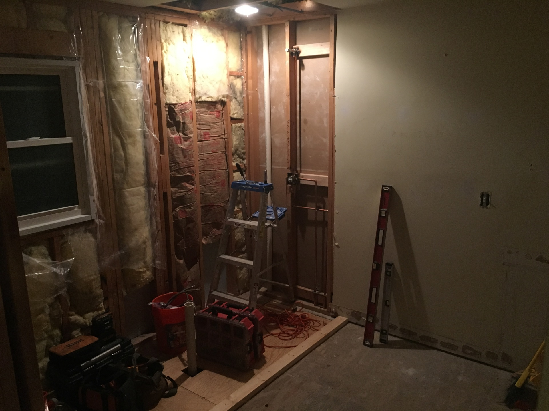 Demo Bathroom in progress
